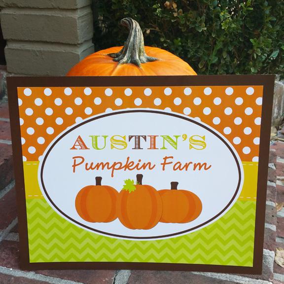 Pumpkin Patch - My Little Pumpkin Collection