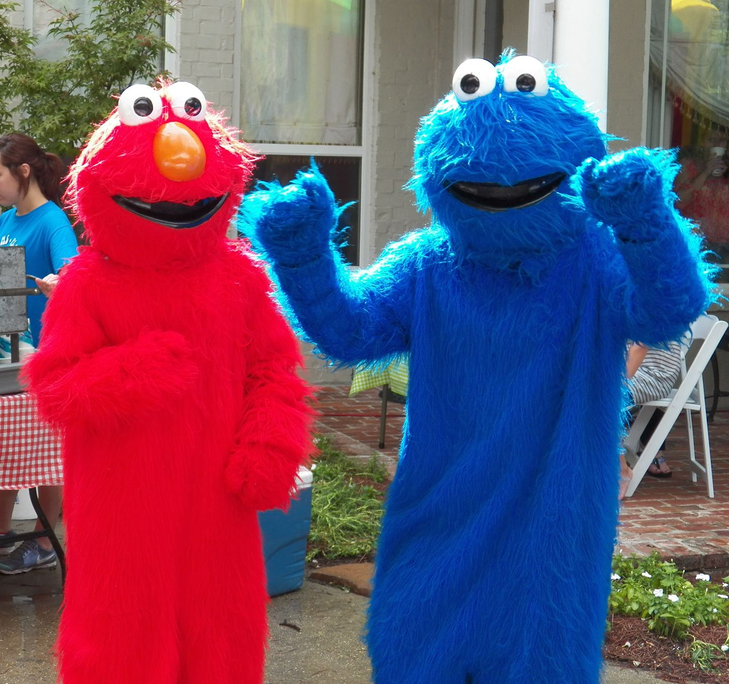 Sesame Street Birthday Party / That Party Chick