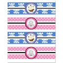 Pirate and Princess Sibling Birthday Personalized Water Bottle Labels