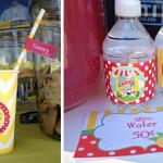 Lemonade Day - Lemonade Stand Ideas